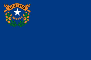 Nevada flag representing DMV approval for online driver improvement course