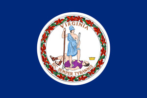 Virginia flag indicating this course is approved by the Virginia DMV for all courts